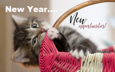 A New Year Equals New Opportunities to Be a Great Pet Owner!
